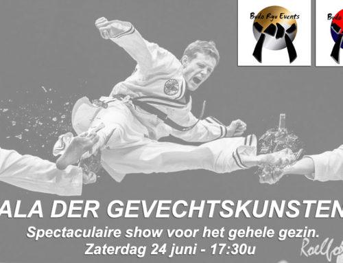 Gala der gevechtskunsten 2015 Kleuterjudo…..